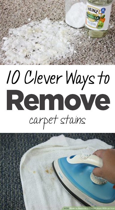 10 Clever Ways To Remove Tricky Carpet Stains Organization Junkie