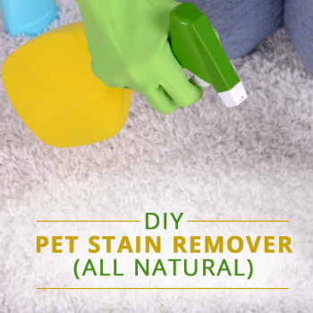 Best ways to remove carpet stains-pet stains