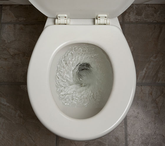 """8 Ways to Get Rid of that """"Pee"""" Smell in Your Bathroom 