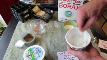 15 +Ways to Use Borax in Your Home