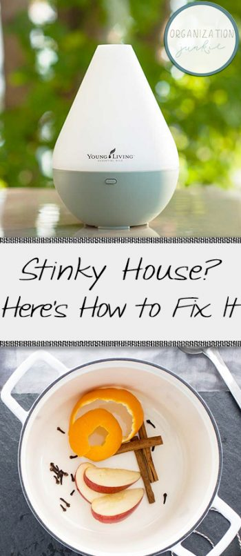 Stinky House? Here's How to Fix It! | Smell Hacks, Smell Hacks for Your House, Home Hacks, Cleaning, Clean Home, How to Get Your Home to Smell Good, Cleaning Tips and Tricks, Cleaning TIps for the Home, Popular Cleaning Pin