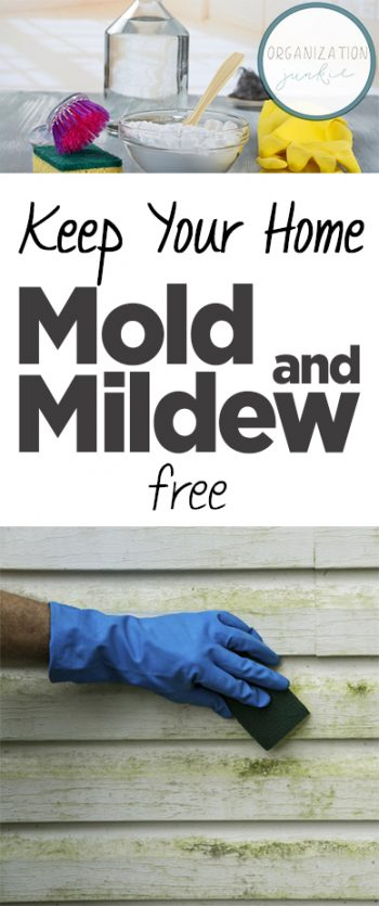 Keep Your Home Mold and Mildew Free| Cleaning Mold and Mildew, How to Clean Mold and Mildew, Cleaning Tricks, Home Cleaning Tips, Clean Your Home, How to Clean Your Home, Removing Mold and Mildew from Your Home, Clean Home Hacks