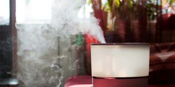 You Should Be Cleaning Your Humidifier| Cleaning, Cleaning Tips, Cleaning Hacks, Clean Home, Clean Home Hacks, Cleaning Schedule, Home Cleaning, Home Cleaning Tips and Tricks
