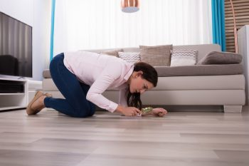 clean freak | clean | signs you're a clean freak | clean house | cleaning tips | cleaning | tips and tricks