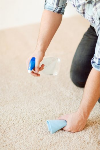 Have you ever spilled eggnog on the carpet? It's the worst, and it's so hard to clean up! These are the best tips on how to clean up spilled eggnog.