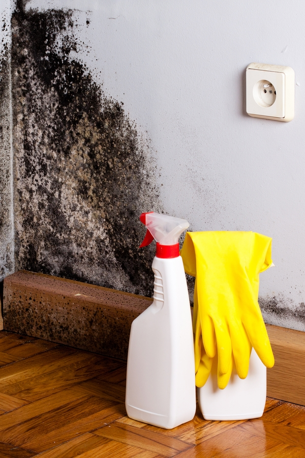 Mold is a sneaky home invader. You may have it growing in your home and not even realize it. But when you do discover it, how do you get rid of it? Today we have tips for cleaning mold that are proven to work.