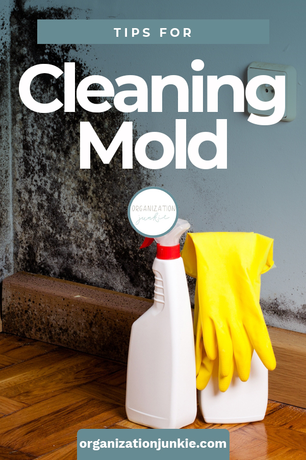 If you ever needed a cleaning tip, it would be for the disgusting job of cleaning mold. Mold is just gross. But, with these proven cleaning tips and tricks, you will know how to clean mold in all types of places around the house. #howtocleanmold #householdcleaningtips #deepcleaning